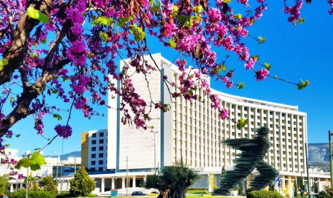 Πάσχα στην πόλη; - Ζήστε μια μοναδική γιορτινή εμπειρία στο Hilton Αθηνών - Κυρίως Φωτογραφία - Gallery - Video