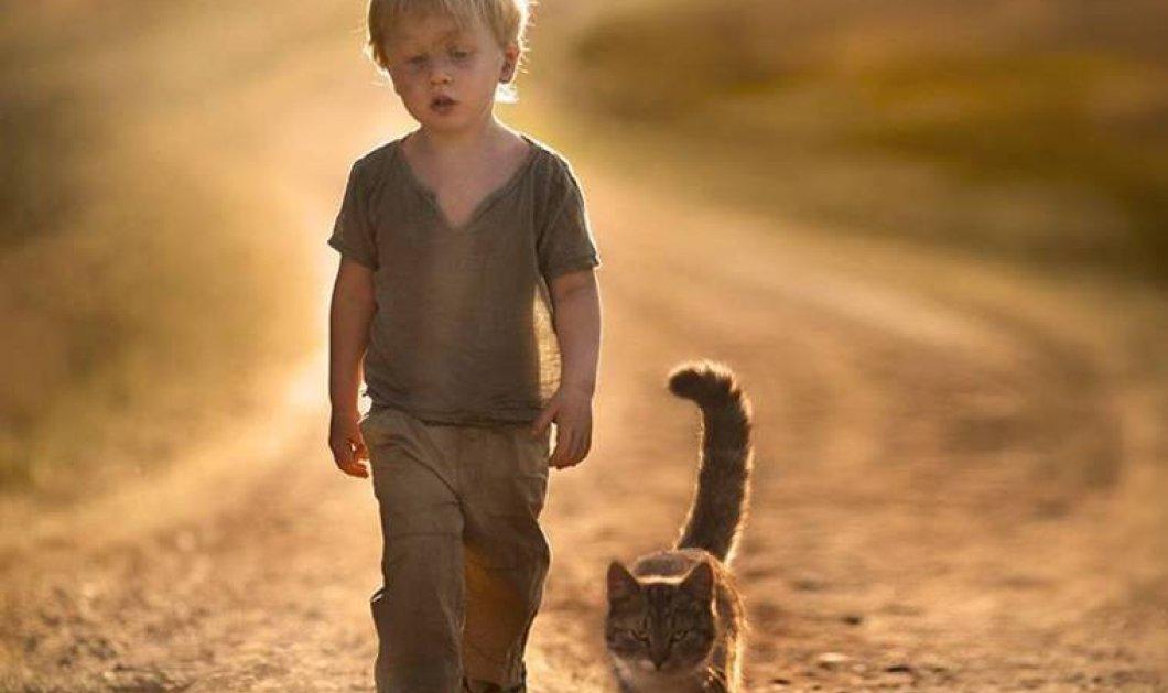 Μοναδικές λήψεις με παιδιά και ζωάκια - Θαυμάστε τις υπέροχες εικόνες της Elena Shumilova  - Κυρίως Φωτογραφία - Gallery - Video
