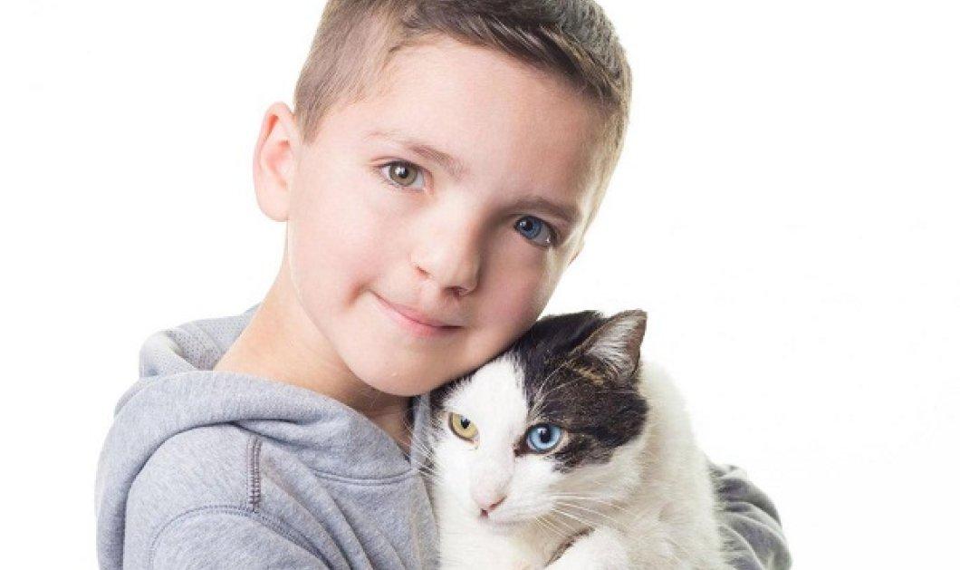 Αυτό το 7χρονο αγόρι ήταν θύμα bullying- Όταν βρήκε έναν γάτο που του έμοιαζε η ζωή του άλλαξε... (ΦΩΤΟ) - Κυρίως Φωτογραφία - Gallery - Video