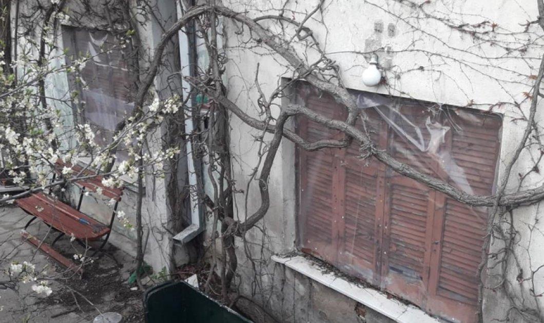 """Σοκάρουν τα νέα στοιχεία για το """"θρίλερ"""" με την ομηρία στη Θεσσαλονίκη: Ήταν βίαιος & απέσπασε 81.000 ευρώ από τα ξαδέλφια του o 58χρονος - Κυρίως Φωτογραφία - Gallery - Video"""