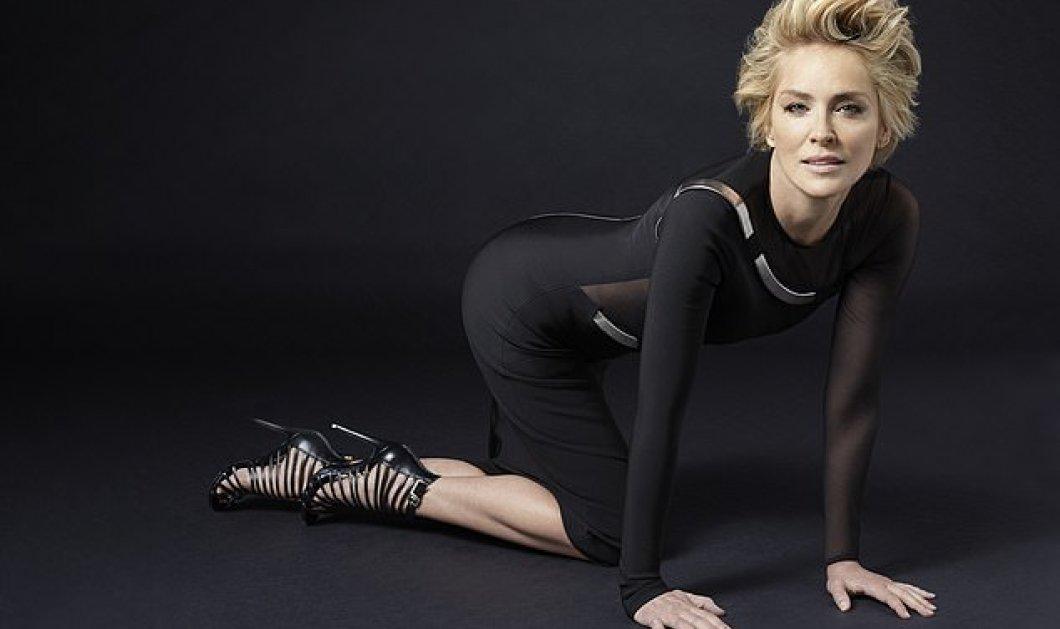 Σάρον Στόουν: Υπέροχες γάμπες γεμάτες μώλωπες όμως- Ένας νέος έρωτας στα πόδια της... - Κυρίως Φωτογραφία - Gallery - Video
