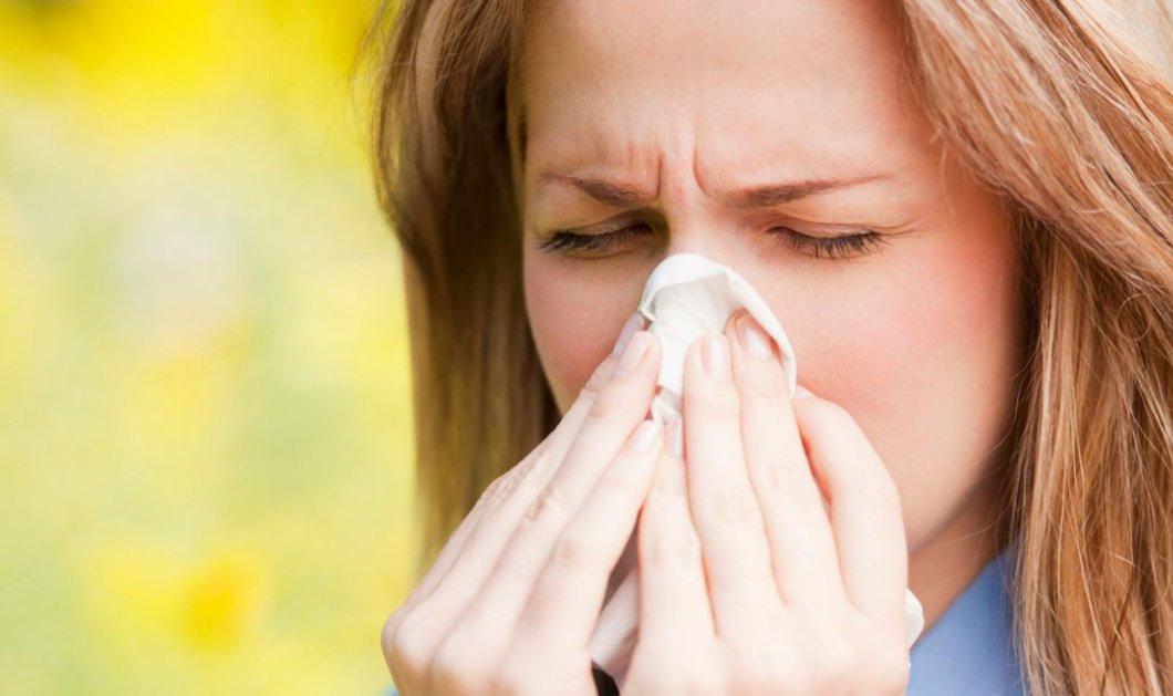 Μεγάλη έξαρση των εποχικών αλλεργιών- Τι αναφέρουν οι επιστήμονες - Κυρίως Φωτογραφία - Gallery - Video