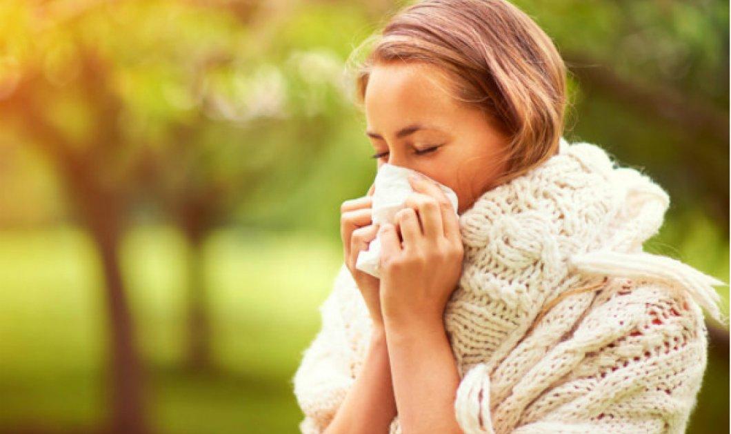 """Εποχιακές αλλεργίες: Έτσι θα """"θωρακίσετε"""" το χώρο σας & θα ανακουφιστείτε! - Κυρίως Φωτογραφία - Gallery - Video"""