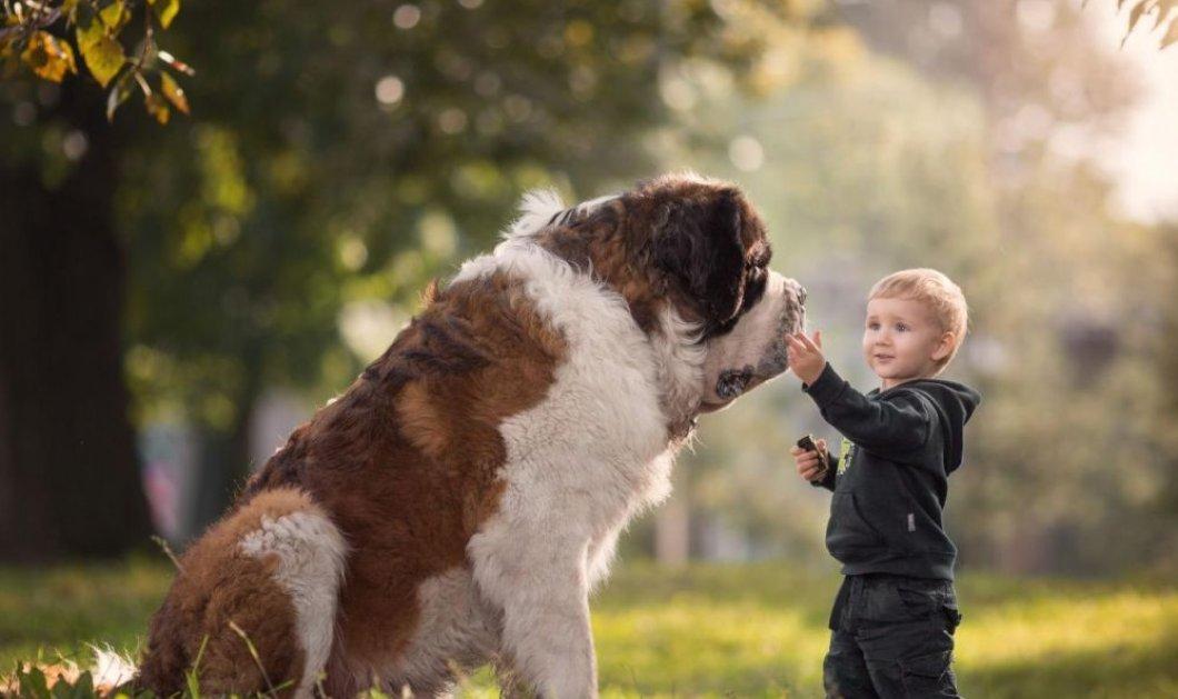 Ποια είναι τα μυστικά της συνύπαρξης για παιδιά και κατοικίδια - Όλα όσα πρέπει να προσέξετε  - Κυρίως Φωτογραφία - Gallery - Video