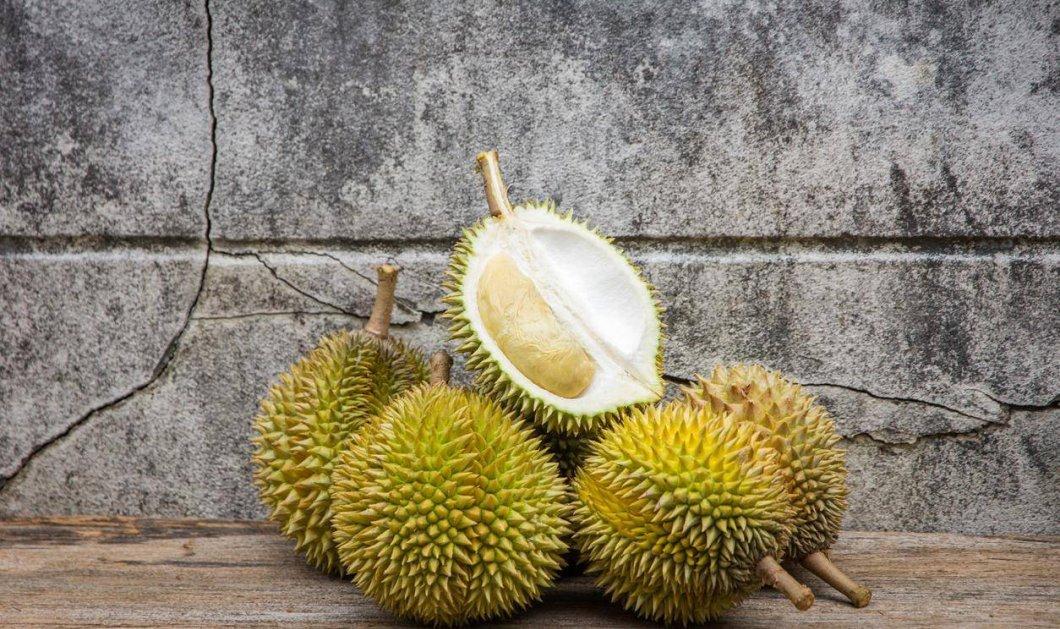 Άδειασαν το Παν/μιο Μελβούρνης απο ενα φρούτο- βρωμούσα! Το πιο δύσοσμο του κόσμου (ΦΩΤΟ-ΒΙΝΤΕΟ) - Κυρίως Φωτογραφία - Gallery - Video