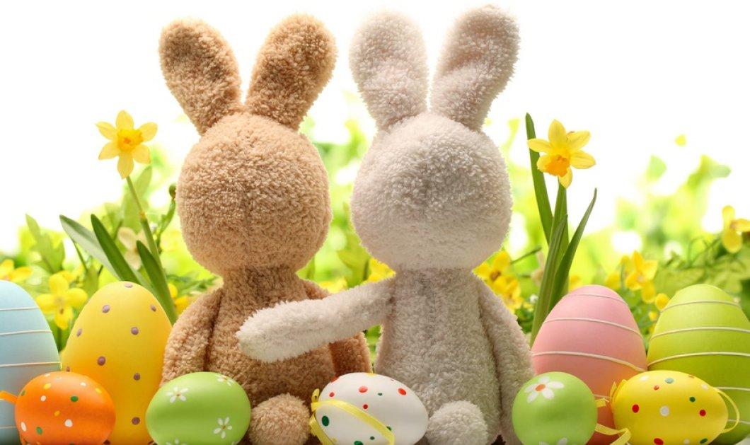 Το eirinika σας εύχεται Χαρούμενο Πάσχα & Χρόνια Πολλά! - Κυρίως Φωτογραφία - Gallery - Video