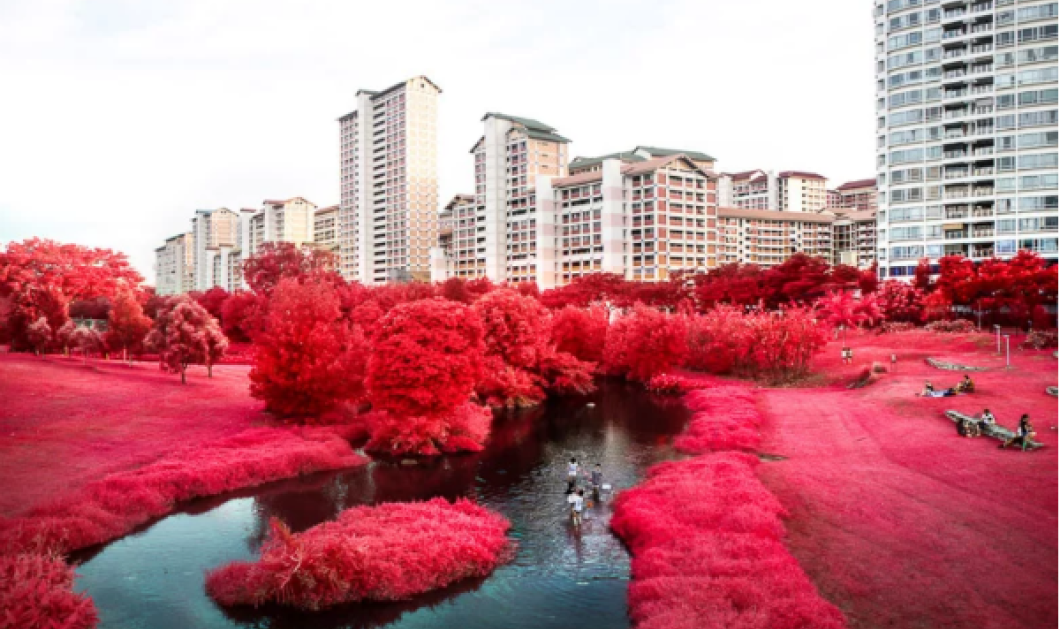 Σ- υ - ν- α- ρ- π - α - σ - τ - ι - κ- ο !! Μια λουλουδένια φαντασμαγορία ή πως ο καλλιτέχνης μετατρέπει σε όνειρο την Σιγκαπούρη (ΦΩΤΟ) - Κυρίως Φωτογραφία - Gallery - Video