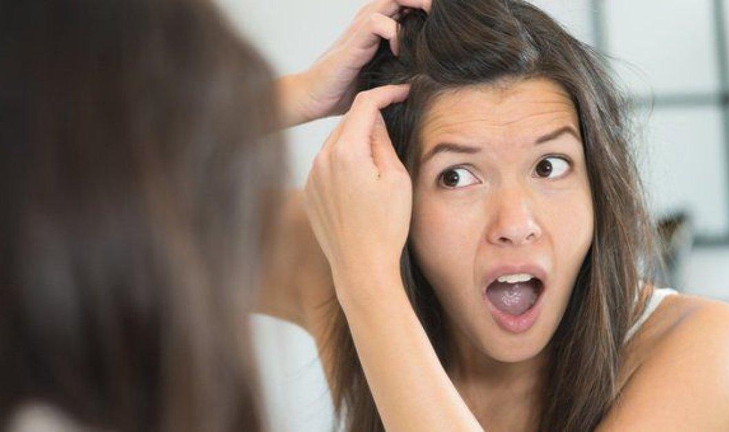 Τελικά γιατί ασπρίζουν τα μαλλιά μας;  - Κυρίως Φωτογραφία - Gallery - Video