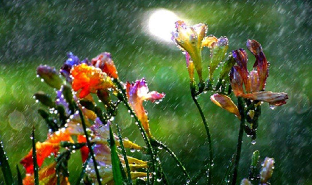 Σάββατο με συννεφιές και τοπικές βροχές και καταιγίδες - Κυρίως Φωτογραφία - Gallery - Video