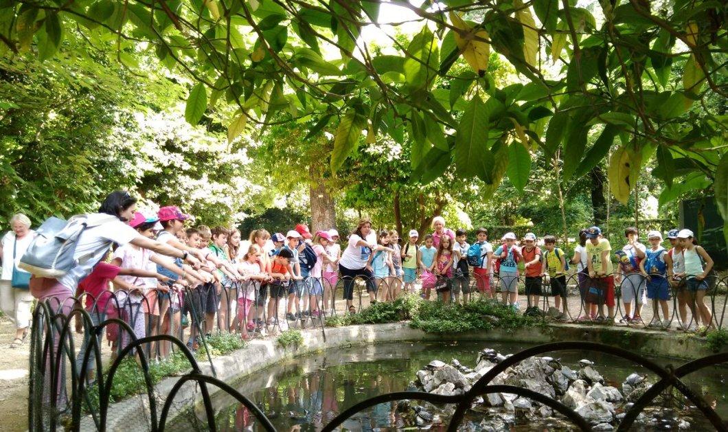 Good news: Ζούμε μία μοναδική εμπειρία στον Κήπο & τα Πάρκα της Αθήνας- Δείτε όλες τις δωρεάν εκδηλώσεις - Κυρίως Φωτογραφία - Gallery - Video