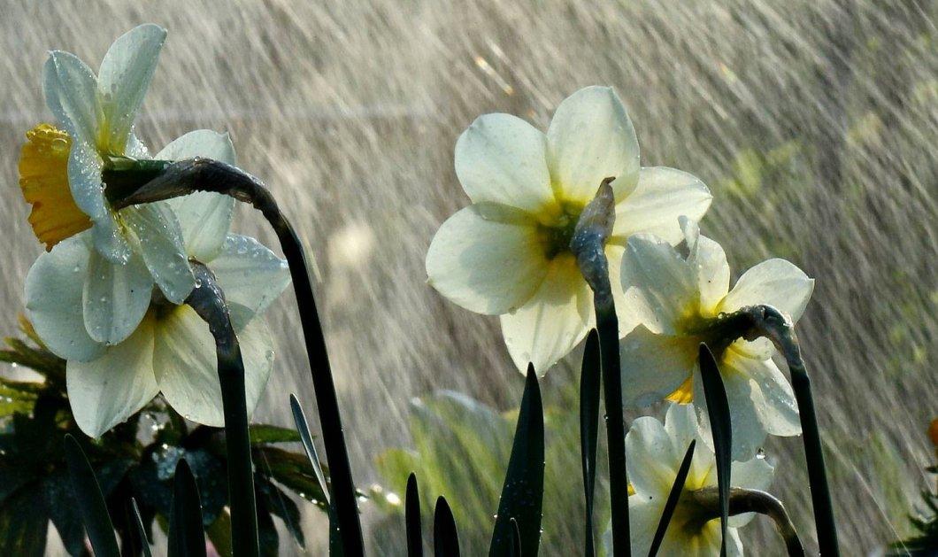"""Άστατος -""""αγριεμένος"""" καιρός -Κυριακή με τοπικές καταιγίδες και χαλάζι - Κυρίως Φωτογραφία - Gallery - Video"""
