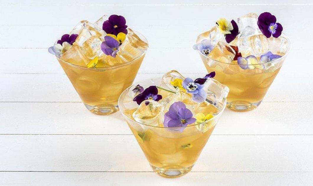 Η πιο δροσιστική πρόταση από τον μοναδικό μας Άκη Πετρετζίκη: Υπέροχο cordial με τζίντζερ και βρώσιμα λουλούδια - Κυρίως Φωτογραφία - Gallery - Video