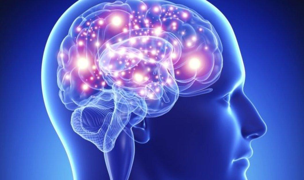 Επιστήμονες κατέληξαν ότι ο εγκέφαλος λειτουργεί και μετά τον θάνατο ενός ανθρώπου - Κυρίως Φωτογραφία - Gallery - Video