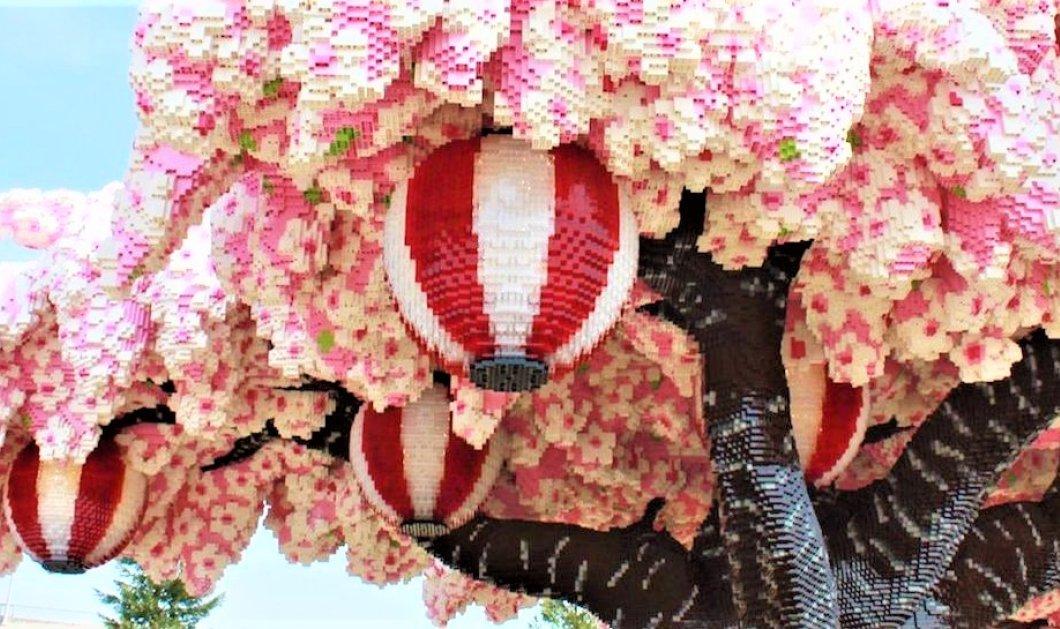 Κατάφεραν να φτιάξουν μια ανθισμένη κερασιά με 881.470  ξεχωριστά τουβλάκια Lego (ΒΙΝΤΕΟ) - Κυρίως Φωτογραφία - Gallery - Video