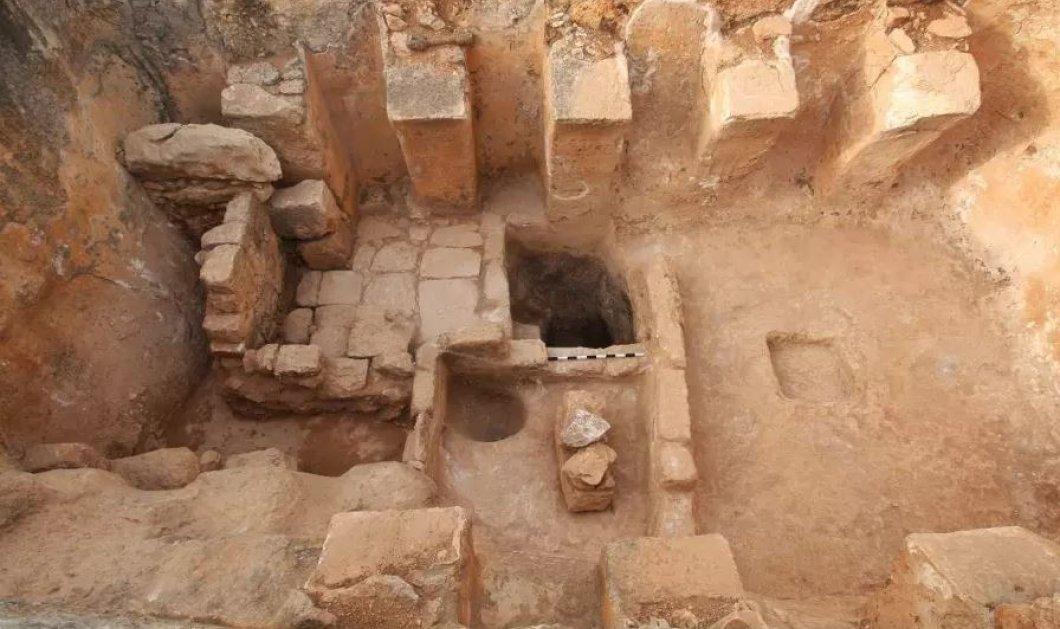 Καταπληκτικό! Ανακαλύφθηκαν δύο αρχαία πατητήρια για κρασί από τη βυζαντινή εποχή και μια χαρουπιά 100 ετών! - Κυρίως Φωτογραφία - Gallery - Video