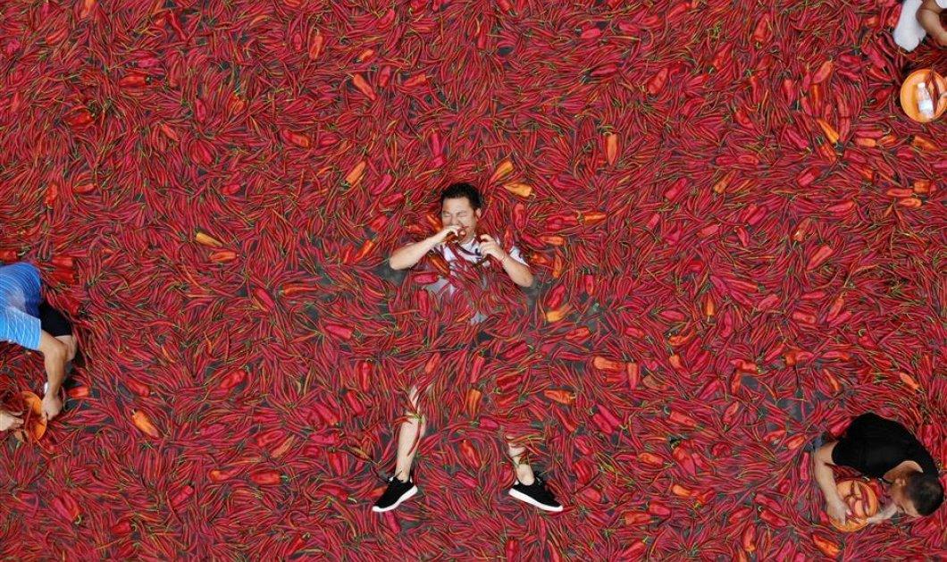 Μια πισίνα γεμάτη καυτερές πιπεριές τσίλι - Ποιος θα φάει τις περισσότερες και γιατί το τολμάει αυτό - Κυρίως Φωτογραφία - Gallery - Video