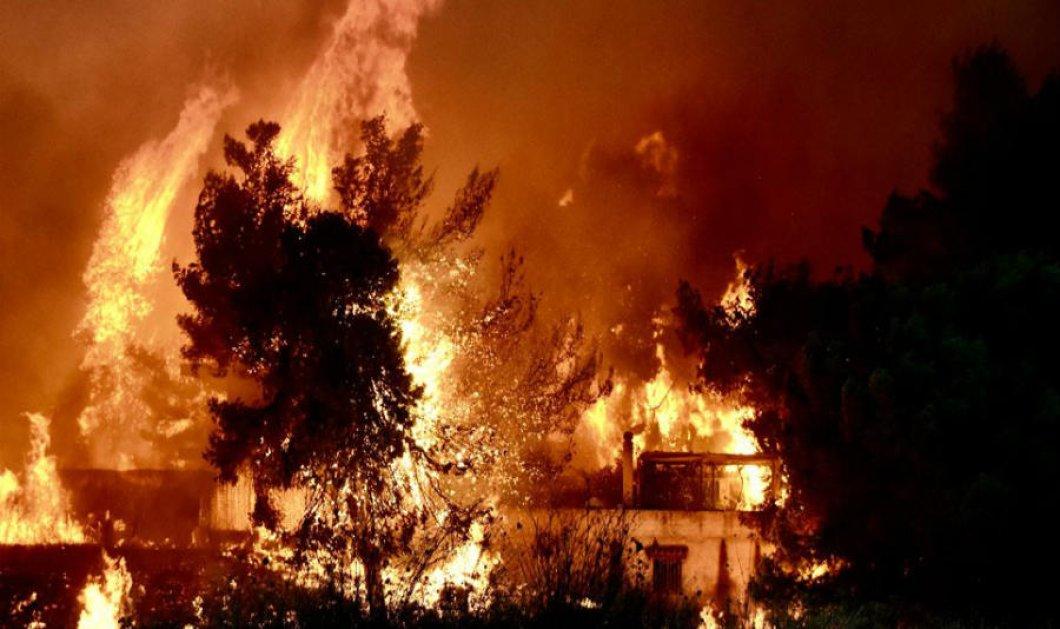Εισαγγελική παρέμβαση για τις πυρκαγιές στην Αττική - Κυρίως Φωτογραφία - Gallery - Video