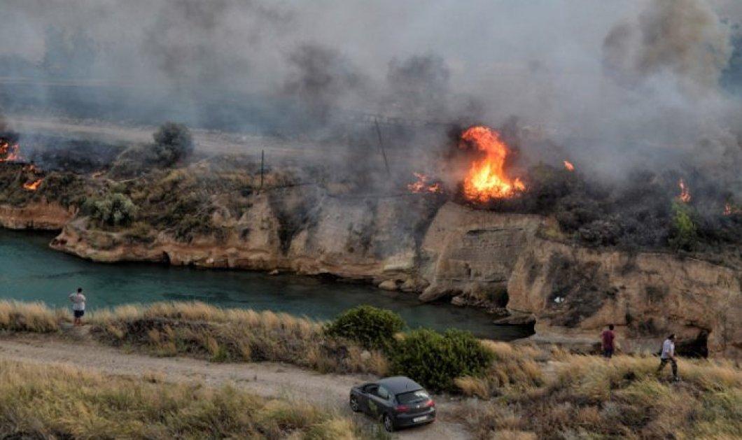 Μικρά παιδιά μεταξύ των νεκρών στις φονικές πυρκαγιές– Κάποιοι πνίγηκαν βουτώντας στην θάλασσα- Η φρεγάτα περισυνέλεξε καμένους - Κυρίως Φωτογραφία - Gallery - Video