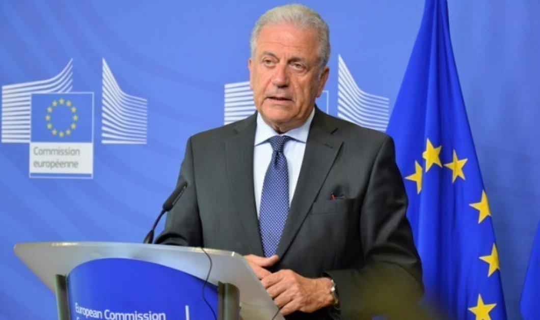 Δ. Αβραμόπουλος. Η ΕΕ είναι στη διάθεση των ελληνικών Αρχών και του ελλ. λαού - Κυρίως Φωτογραφία - Gallery - Video