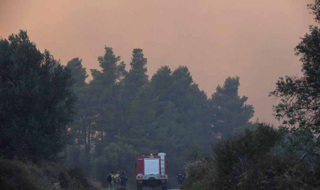 Μεγάλη πυρκαγιά στην Εύβοια - Εκκενώθηκαν χωριά- Ορατοί στην Αττική οι καπνοί (φωτο-βιντεο) - Κυρίως Φωτογραφία - Gallery - Video