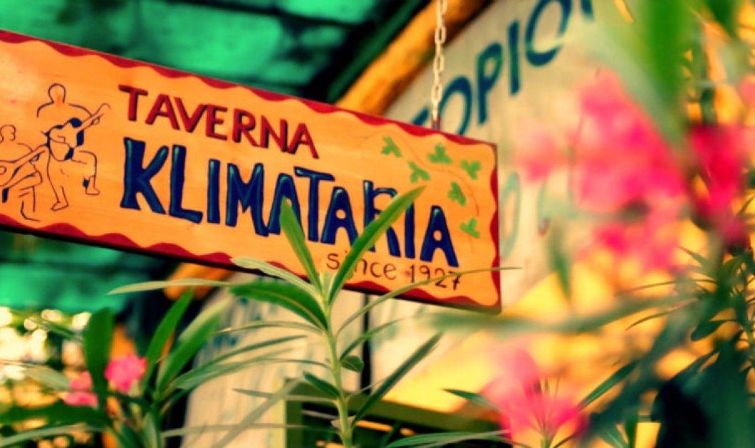 Η «Κληματαριά» κλείνει τα 90 με ένα διήμερο γλέντι: Ο Μάγκας, η Βελεσιώτου και ο «Χαΐνης» στην Πλατεία Θεάτρου - Κυρίως Φωτογραφία - Gallery - Video