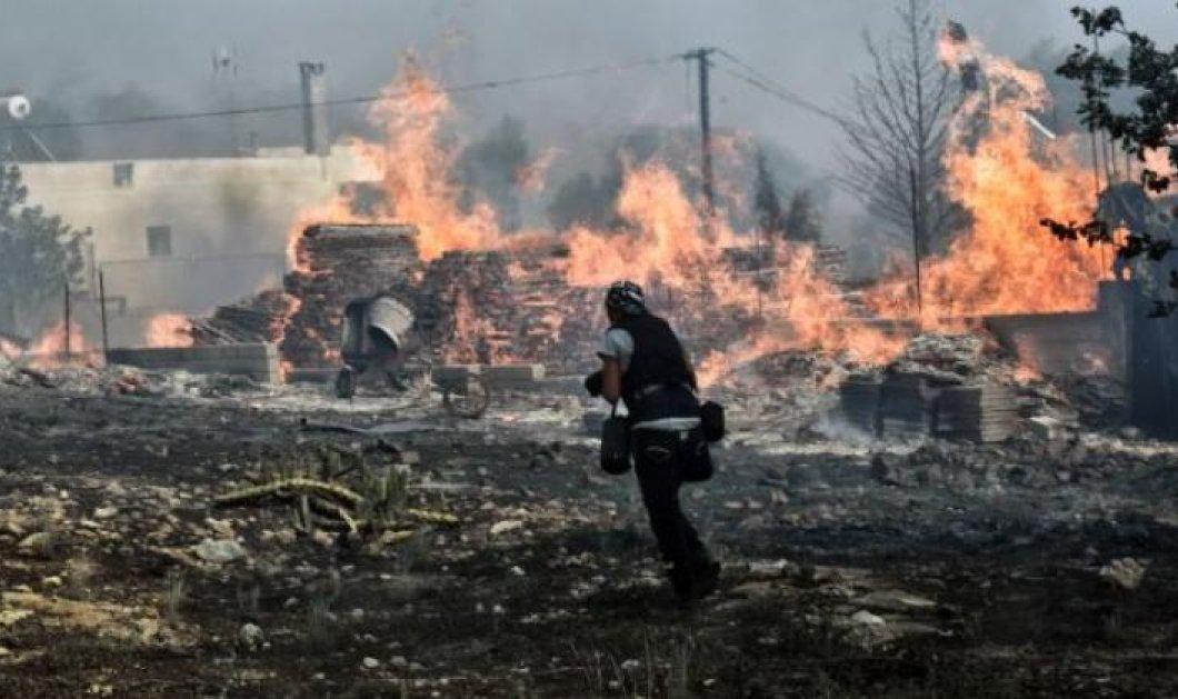 Πυρκαγιές στην Αττική: Μήνυση συγγενών θυμάτων κατά των Ρένας Δούρου, Ηλία Ψινάκη και Ιωάννη Καπάκη - Κυρίως Φωτογραφία - Gallery - Video