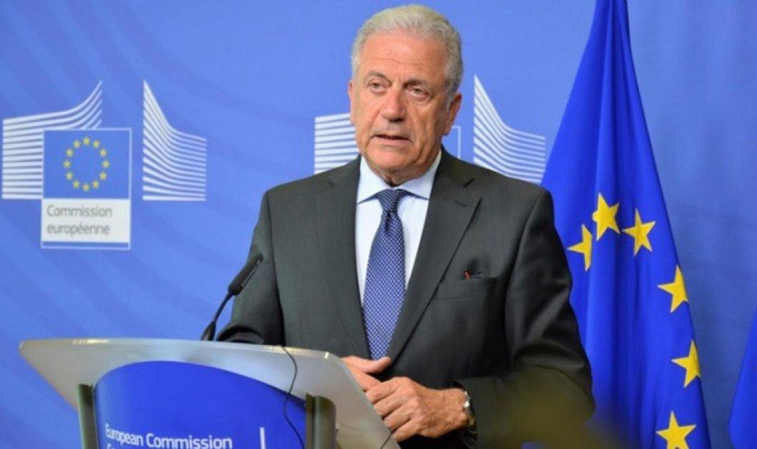 Δ. Αβραμόπουλος για μεταναστευτικό: Η πολιτική μας να αποτυπώνει τις αξίες, όχι τους φόβους μας - Κυρίως Φωτογραφία - Gallery - Video