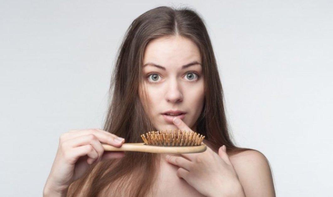 Τριχόπτωση: Αντιμετώπιση και θεραπεία με μάσκες μαλλιών και βιταμίνες, βότανα για όλες τις ηλικίες και τα δύο φύλα - Κυρίως Φωτογραφία - Gallery - Video