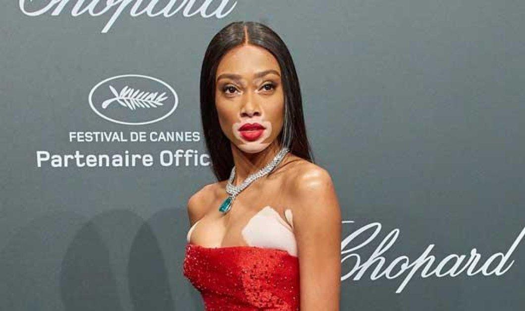Κίνηση με συμβολισμούς από τη «Victoria's Secret»: Η Γουίνι Χάρλοου, το μοντέλο με λεύκη, θα γίνει «αγγελάκι» - Κυρίως Φωτογραφία - Gallery - Video