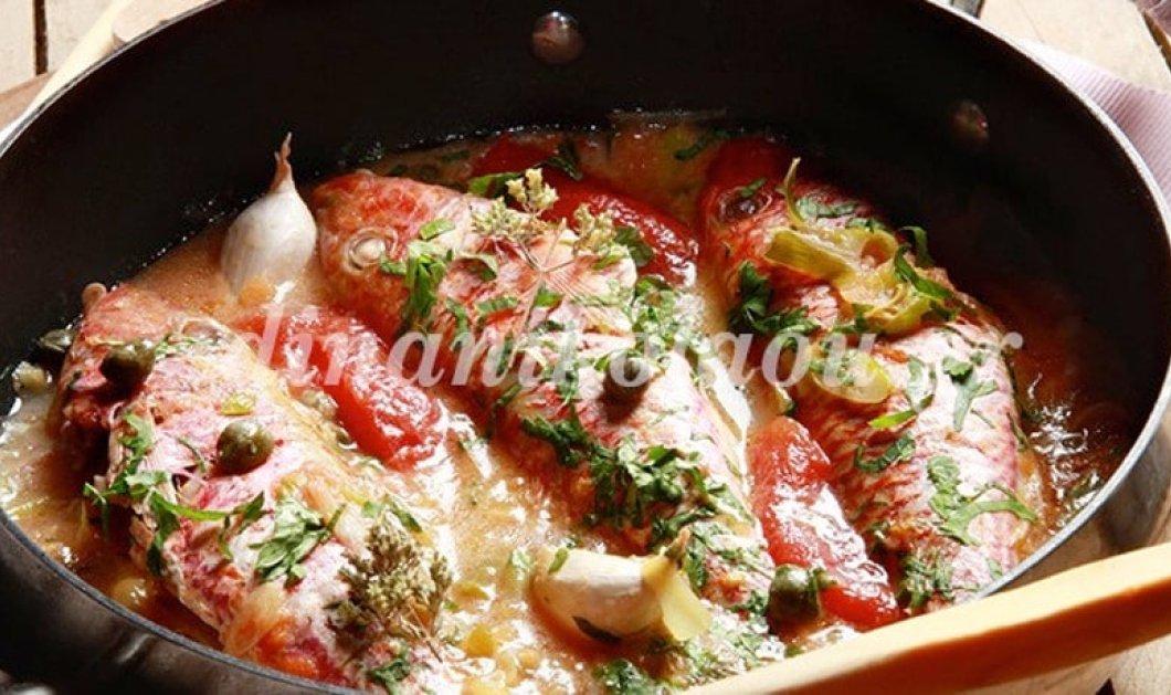 Συνταγή παρέας τα ντελικάτα μπαρμπούνια στο τηγάνι με ντομάτα και κάππαρη της Ντίνας Νικολάου - Κυρίως Φωτογραφία - Gallery - Video
