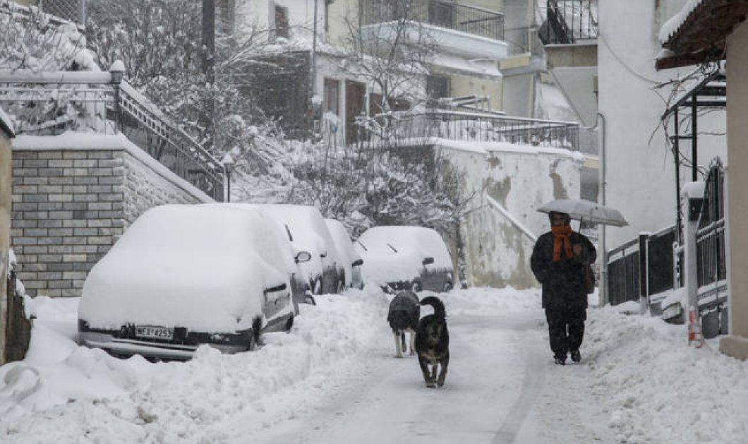 Πρώτες εικόνες και βίντεο με τα χιόνια σε Βασιλίτσα, Παρνασσό, Φθιώτιδα – Καλό χειμώνα! - Κυρίως Φωτογραφία - Gallery - Video