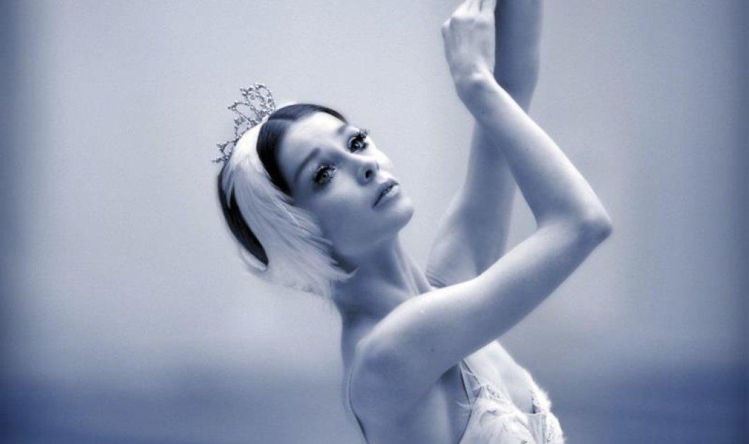 To Christmas Gala Ballet θα ανοίξει την αυλαία του Christmas Theater της Αθήνας - Κυρίως Φωτογραφία - Gallery - Video