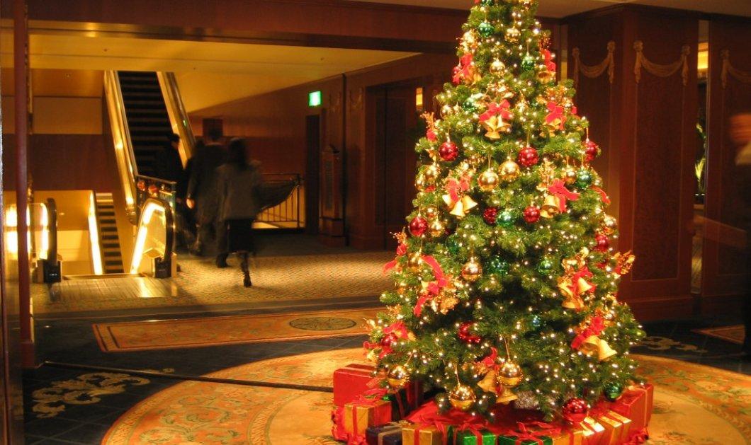 7 υπέροχα χριστουγεννιάτικα δέντρα που θα σου δώσουν έμπνευση για το πως να στολίσεις το δικό σου (φωτό) - Κυρίως Φωτογραφία - Gallery - Video