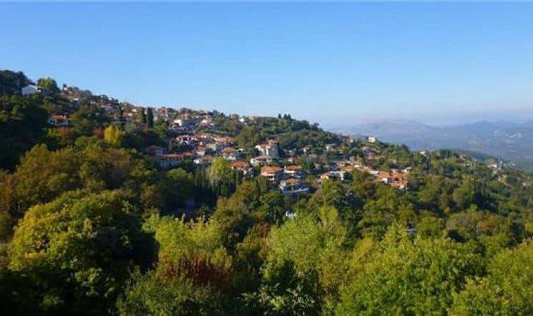 Γεωργίτσι: Το καταπράσινο ορεινό χωριό του νομού Λακωνίας σε ένα υπέροχο βίντεο από ψηλά - Κυρίως Φωτογραφία - Gallery - Video