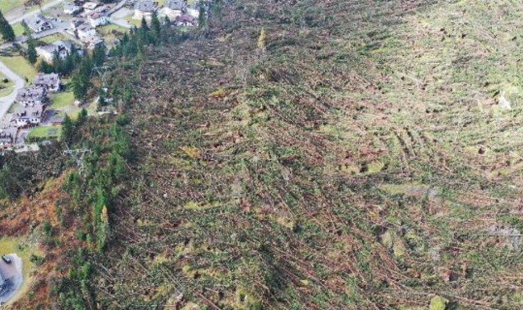 Ολική καταστροφή από τις πλημμύρες στην Ιταλία - 18 νεκροί & 14 εκατομμύρια δέντρα εξαφανίστηκαν από την ορμή των υδάτων (Φωτό & Βίντεο) - Κυρίως Φωτογραφία - Gallery - Video