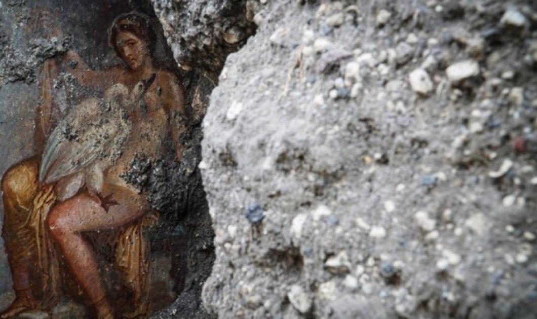 Πομπηία: Η ερωτική τοιχογραφία της Λήδας με τον Κύκνο - Αποκαλύφθηκε η καλλονή βασίλισσα της Σπάρτης με τον Δία (Βίντεο) - Κυρίως Φωτογραφία - Gallery - Video