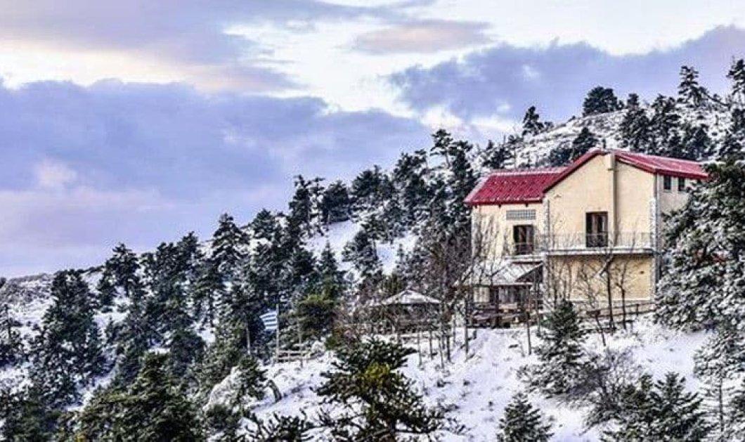 Η χιονισμένη Πάρνηθα από ψηλά είναι μαγευτική – Μοναδικά πλάνα από drone (βίντεο) - Κυρίως Φωτογραφία - Gallery - Video