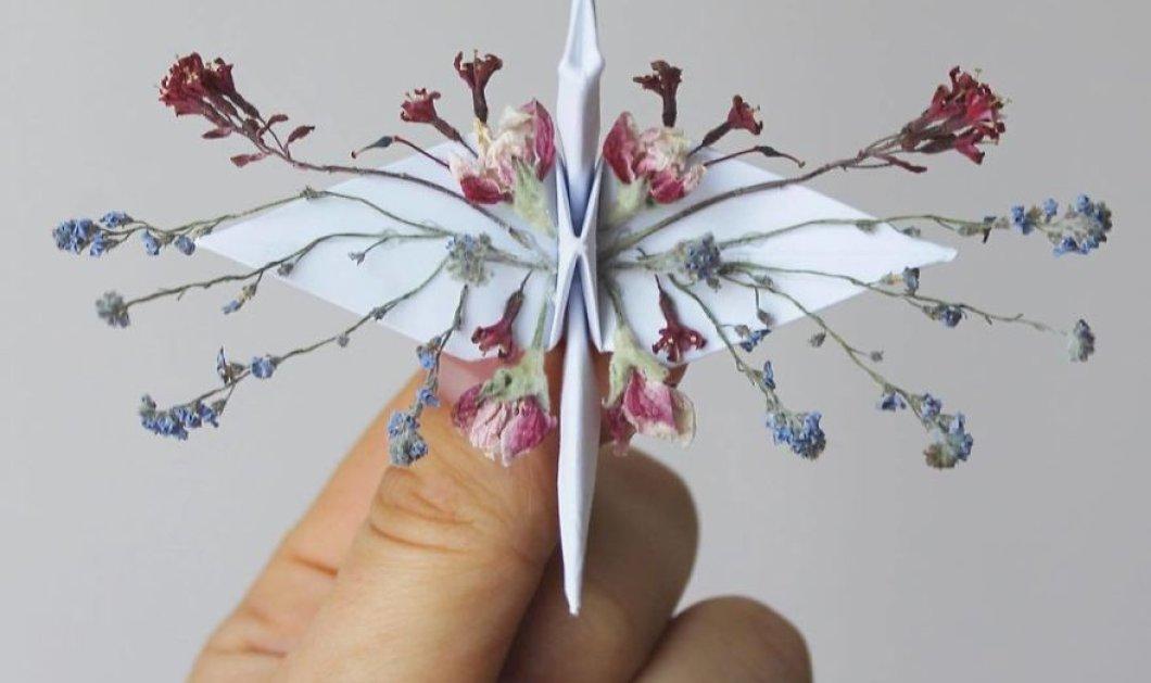 Καλλιτέχνης δημιουργεί φαντασμαγορικά πουλιά Οριγκάμι - Μικροσκοπικά & με απίστευτη λεπτομέρεια - Φώτο  - Κυρίως Φωτογραφία - Gallery - Video