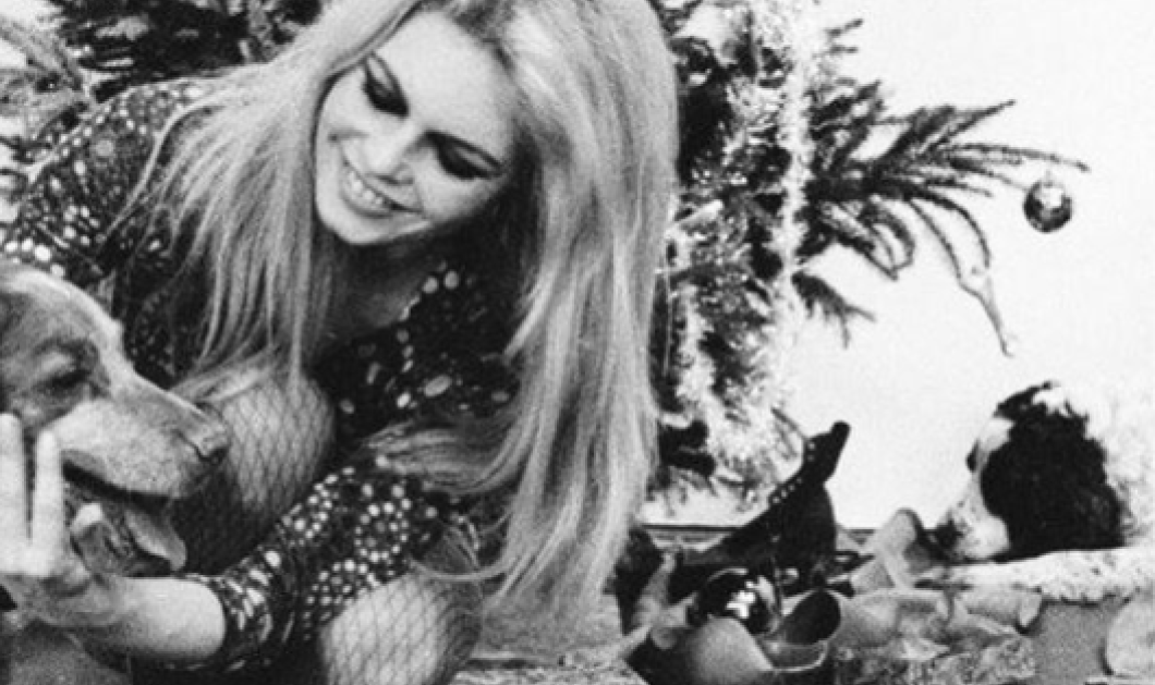 Vintage σπάνια κλίκς: H Μπριζίτ Μπαρντό με το Χριστουγεννιάτικο δέντρο & τους σκύλους της γύρω στο 1960    - Κυρίως Φωτογραφία - Gallery - Video