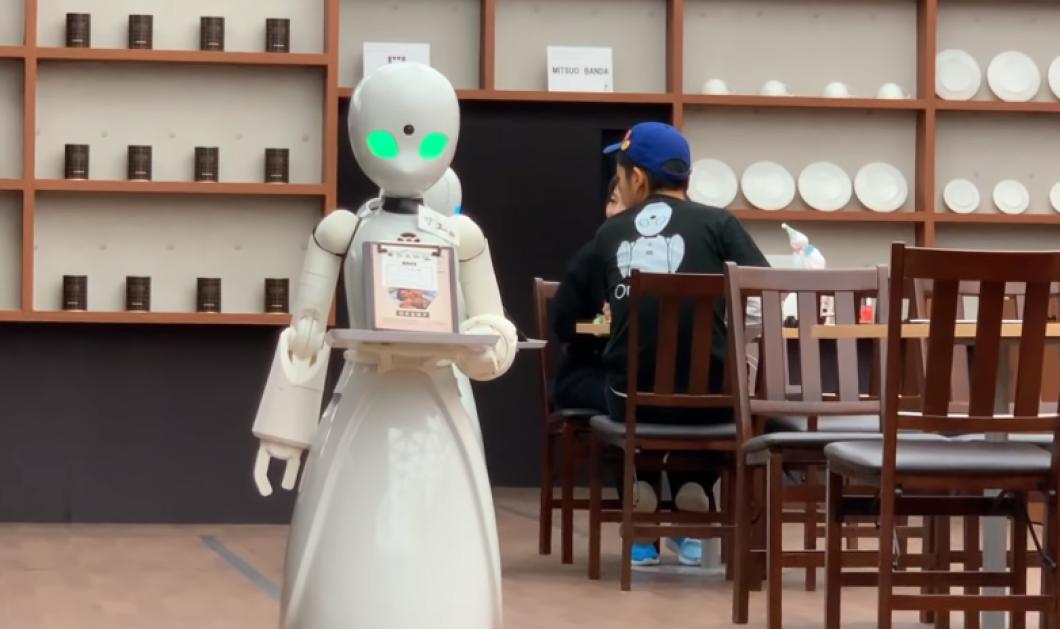 Βίντεο: Η πρώτη καφετέρια με σερβιτόρους-ρομπότ μόλις έκανε εγκαίνια - Δείτε ποιους εξυπηρετεί - Κυρίως Φωτογραφία - Gallery - Video