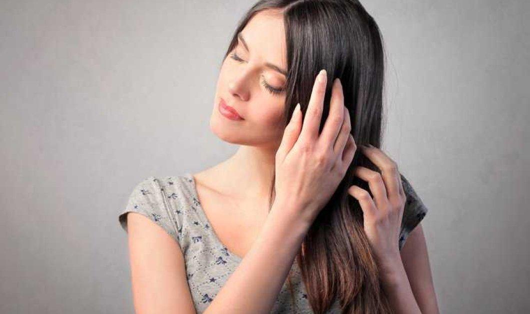 Φτιάξτε σπιτική μάσκα για τα μαλλιά σας με ελαιόλαδο: Τι οφέλη προσφέρει  - Κυρίως Φωτογραφία - Gallery - Video