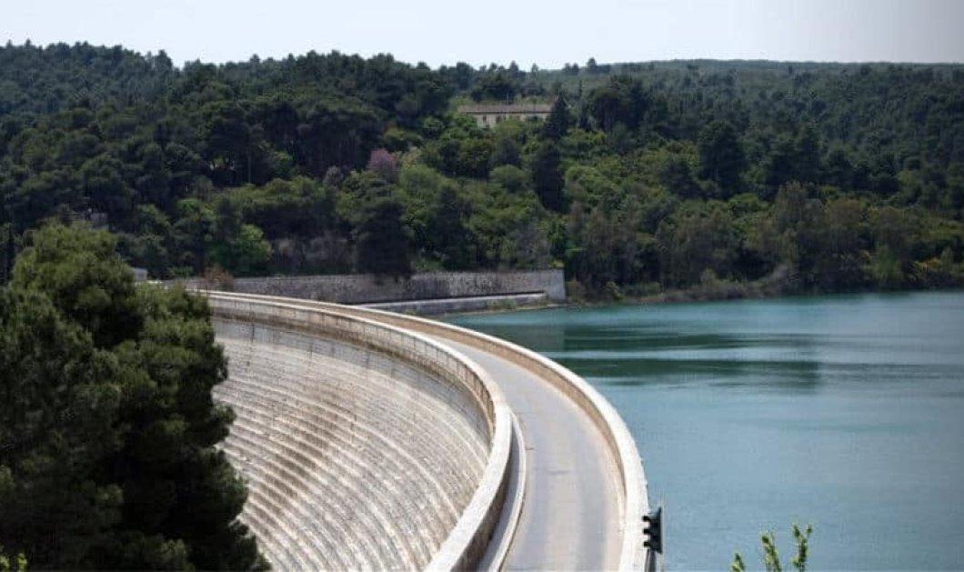 Λίμνη Μαραθώνα: Ο παράδεισος της Αττικής απέχει μερικά μόλις χιλιόμετρα από το κέντρο της Αθήνας  - Κυρίως Φωτογραφία - Gallery - Video