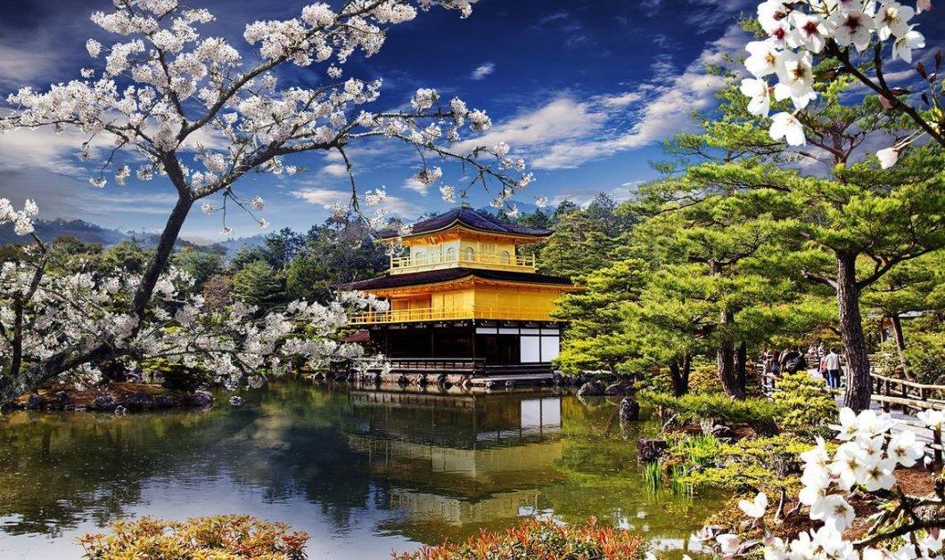 Συγκλονιστικά φωτογραφικά κλικ μας ταξιδεύουν στην Ιαπωνία σε ένα ταξίδι - έμπνευση - Κυρίως Φωτογραφία - Gallery - Video