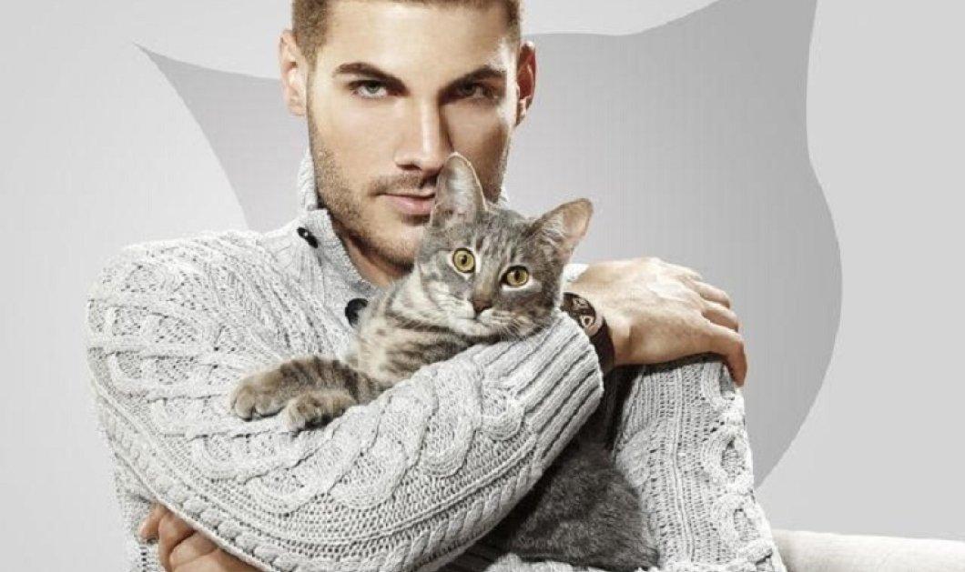 Τον βλέπεις και τρομάζεις: Του μετέδωσε σπάνιο βακτήριο η γάτα του (φωτό) - Κυρίως Φωτογραφία - Gallery - Video