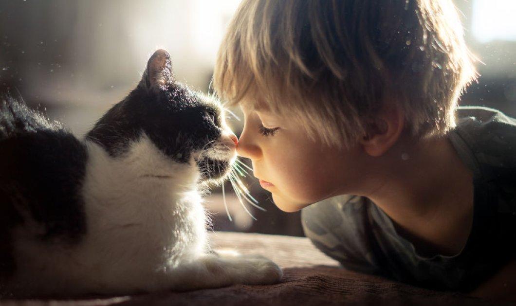 Καλλιτέχνιδα απαθανατίζει με τον φακό της σε φωτο - άλμπουμ την ιδιαίτερη σχέση της γάτας της με τον γιό της - Κυρίως Φωτογραφία - Gallery - Video