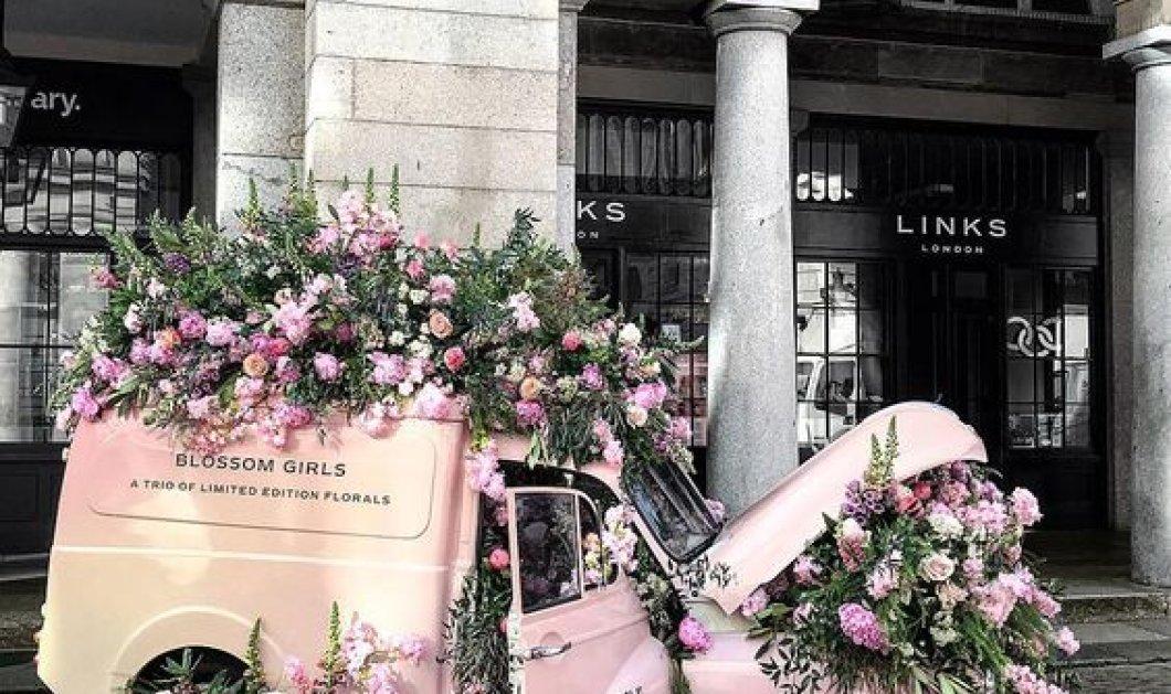 50+ υπέροχα τριαντάφυλλα για να ξετρελάνετε την σχέση σας: Ροζ, κόκκινα, φούξια ή μαύρα; Φώτο  - Κυρίως Φωτογραφία - Gallery - Video