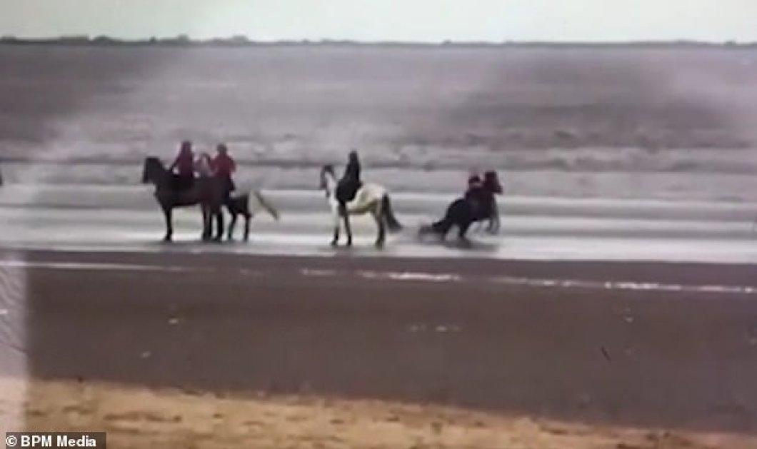 Καρέ - καρέ η στιγμή που το άλογο ρίχνει 9χρονο κορίτσι στο έδαφος - Του  επιτέθηκε  σκύλος - Κυρίως Φωτογραφία - Gallery - Video