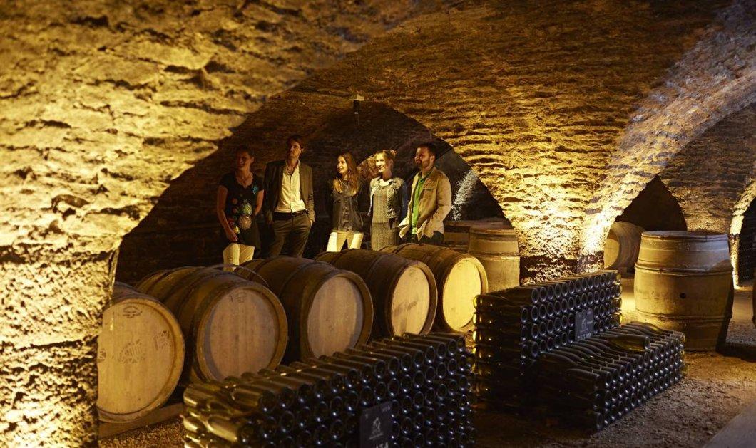 Σπύρος Ρεπούσης: Το κρασί ως εναλλακτική μορφή επένδυσης - Πως το Chateau Lafite του 1982 είχε συνολική απόδοση 857%  - Κυρίως Φωτογραφία - Gallery - Video