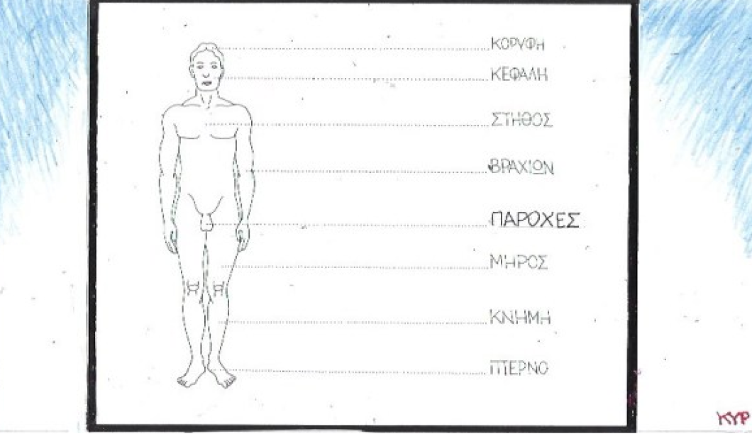 Ο ΚΥΡ μας παρουσιάζει την... ανατομία των παροχών - Σε ποιο σημείο του σώματος βρίσκονται - Κυρίως Φωτογραφία - Gallery - Video