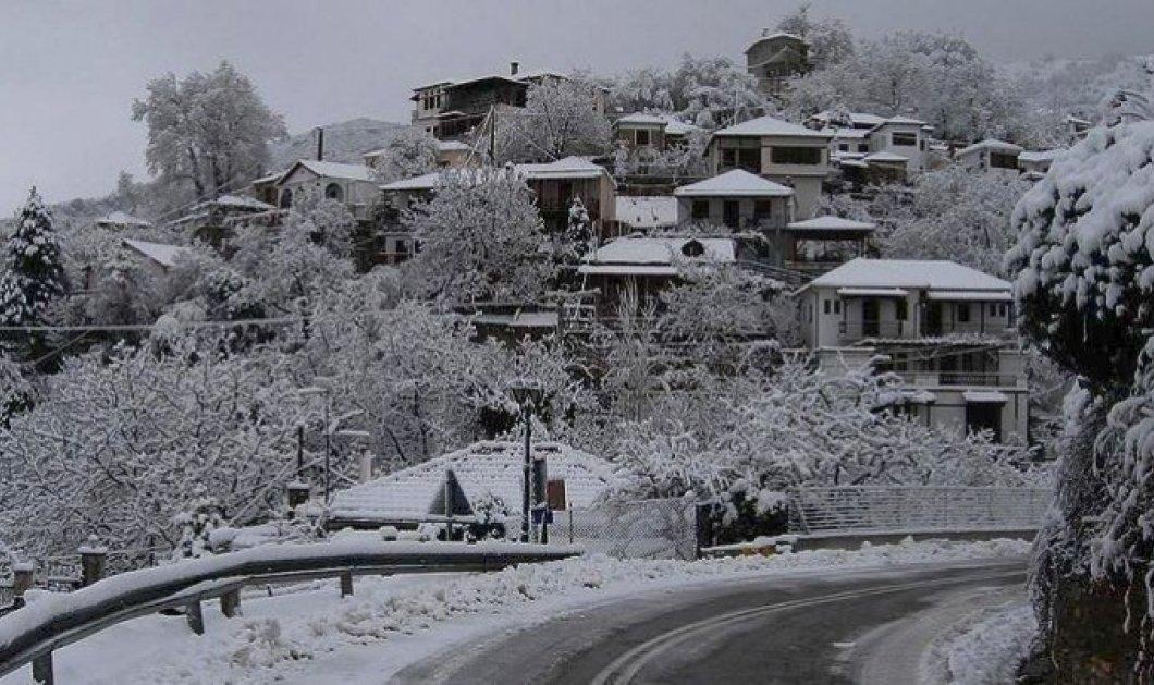 Που θα χτυπήσει ο ''Τηλέμαχος'' - Κλειστά πολλά σχολειά σε Αττική και υπόλοιπη Ελλάδα - Κυρίως Φωτογραφία - Gallery - Video